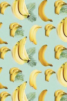 Bananas + palm tree leaves