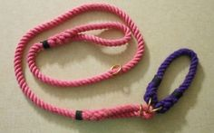 Review: LASSO Dog Leash | Top Dog Tips
