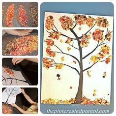 Fall Tree made out of colored oats. A great sensory