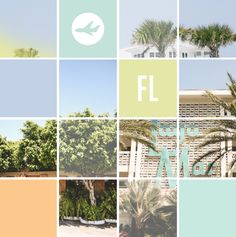 to florida / breanna rose. I love this layout, colors and photography. Beautiful.