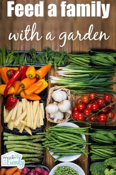 Feed a family with a garden