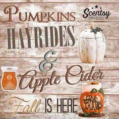 I love fall  https://kelliesheavenlyscents.scentsy.us/party/8210721