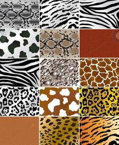 Animal Prints – From Retro till Date, A Never-Fading Fashion Trend Les textures de peau des animaux African Animals, African Art, Afrika Shop, Carta Collage, Animal Print Fashion, Animal Prints, Le Zoo, Motifs Animal, Safari Animals