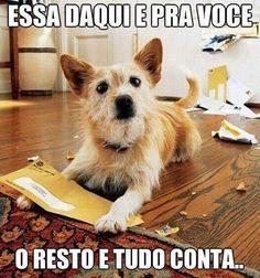 #petmeupet  #caopanheiro  #caopanhia  #cachorroétudodebom  #cachorroterapia  #cachorro  #filhote  #filhode4patas  #maedepet  #maedecachorro  #paidecachorro