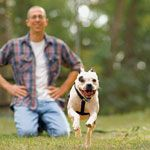 What Bunny Did for Love: A Rescued Dog Saves His Foster Owner's Life