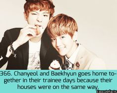 Exo Facts.