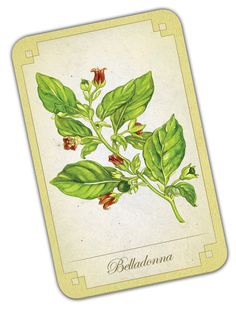 belladonna homeopathy remedy Online research for a homeopathic headache remedy lead me to belladonna 30c  by boiron, and boiron is my favorite brand i like skipping the nsaids, i like the.