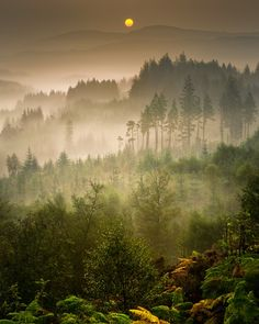Autumn moves in... Dukes Pass, Trossachs... by David Mould on 500px