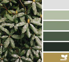 Winter Tones | design seeds | Bloglovin'. Love this green palette!