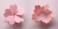 Sakura packaging
