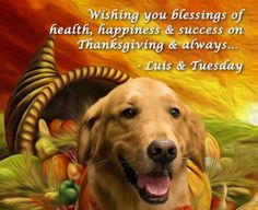 Wishing you blessings of health, happiness & success on Thanksgiving & always...                  - Luis & Tuesday