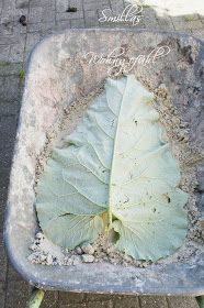 DIY concrete leaves, Anleitung für Blätter aus Beton Zement