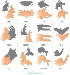 Schattenspiel Mehr puppets Shadow forms made by hand Shadow Puppets With Hands, Activities For Kids, Crafts For Kids, Diy Crafts, Hand Shadows, 1000 Life Hacks, Shadow Art, Shadow Play, Kids And Parenting