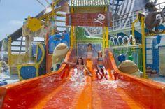 #MSCKreuzfahrten #Ferien Patrick Star, Patrick Spongebob, Kegel, Kind, Cruises