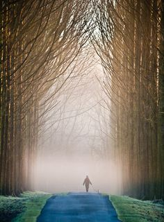 places to go pathways Beautiful World, Beautiful Places, Beautiful Pictures, Plein Air, Dog Walking, Pathways, Belle Photo, Monuments, Wonders Of The World