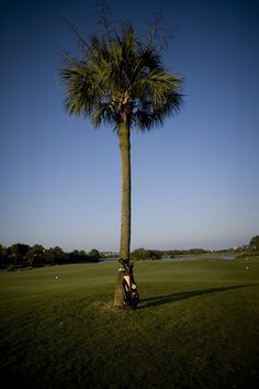 Hilton Head Golf Courses & Golf Vacation Packages