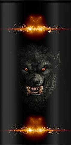 Wolf Wallpaper, Iphone Wallpaper, Horror, Movie Posters, Wallpapers, Animals, Random, Art, Art Background