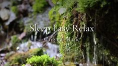 Nature is Perfect, this Peaceful, Calming Relaxation music is ideal for Relaxation and Sleep. Please Enjoy this Original, Peaceful Music by Sleep Easy . Relaxation Meditation, Deep Relaxation, Guided Meditation, Kids Spa Party, Sleep Dream, Calming Music, Yoga Music, Music Heals, Original Music