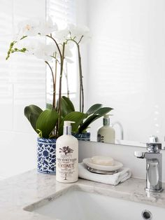 These affordable Hamptons-style pieces will make you feel like you're on a permanent holiday in your own home. Hampton Style Bathrooms, Luxury Homewares, Bathroom Styling, Ginger Jars, Coastal Living Style, Bathroom Style, Hamptons Style Decor, Beach House Bathroom, Hamptons Kitchen