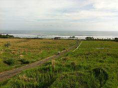 Trail through the fields to the beach, Medewi, Bali, Indonesia