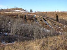 Paskapoo Ridge - Canada Olympic Park - Calgary, Alberta, Canada Alberta Canada, Calgary, Lakes, Olympics, Beaches, Hiking, Country Roads, Camping, Park