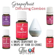 ♥️ grapefruit- one of my favorite essential oils from Young Living.  amazing in the diffuser
