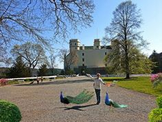 The amazing castle Orlik nad Vltava Golf Courses, Castle, Amazing