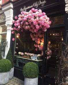 """Debby: Botanica Trading op Instagram: """"BY APPOINTMENT ONLY, Flower Shop, Chiltern Street, London. Fabulous florists are not the complete preserve of Paris as it testified by this dramatic store front display of roses. Flowers always bring joy. Pinterest #florist #flowershop #roses #storefrontstyling #storefront #londonflorist #topiary #rosa #petal #flowerporn @byappointmentonlydesign"""""""