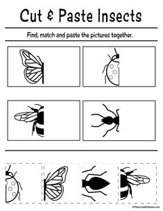 Fun cut and paste worksheets for preschool FREE printable. Perfect for fine motor skills and preschool cutting practice. activities for preschool FREE printable cut and paste worksheets for preschool Pre K Worksheets, Cut And Paste Worksheets, Printable Preschool Worksheets, Kindergarten Worksheets, Free Worksheets For Kids, Worksheets For Preschoolers, Bug Activities, Preschool Learning Activities, Free Preschool