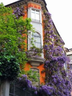 Flora Botanica, Fantasy Castle, World Of Darkness, Ancient Ruins, Its A Wonderful Life, Wisteria, Windows, City, Building