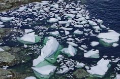 Twillingate, Newfoundland is one of the best places in the world to see icebergs. Several coastal trails offer excellent iceberg viewing from May to July. Stuff To Do, Things To Do, East Coast Travel, Newfoundland Canada, Boat Tours, Rest Of The World, Great View, Hiking Trails, Beautiful Beaches