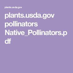 plants.usda.gov pollinators Native_Pollinators.pdf