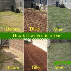 7 Best Sod Installation Images Lawn Care How To Lay