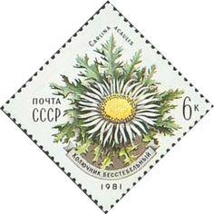 Znaczek: Carlina acaulis (ZSRR) (Flowers) Mi:SU 5075