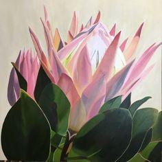 Original Floral Painting by Kimberley Cardow Protea Art, Protea Flower, Paintings I Love, Flower Paintings, Flower Art, Art Flowers, Photo On Wood, Impressionism Art, Bedroom Art