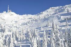 Snow Record - Madonna di Campiglio #alps #Italy #snow #ski