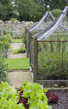 Beautiful oak fruit cages.  I have never seen anything quite so lovely.  Portfolio garden 2 - Arne Maynard Garden Design