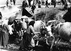 Εκδηλώσεις μνήμης της Μικρασιατικής Καταστροφής στην Κατερίνη