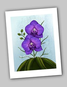 Purple Vanda Orchid Flowers Art Print, by Sherrie Thai of Shaireproductions. Print available for $14.50 on Etsy: https://www.etsy.com/listing/220099164/purple-vanda-orchid-flowers-art-print?ref=shop_home_active_1