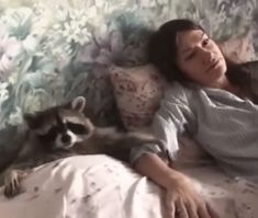 Rocket raccoon can get laid. - Cute Even Rocket raccoon can get laid. - Cute - Even Rocket raccoon can get laid. Cute Animal Videos, Funny Animal Pictures, Cute Funny Animals, Cute Baby Animals, Animals And Pets, Cute Dogs, Strange Animals, Wild Animals, Pet Raccoon
