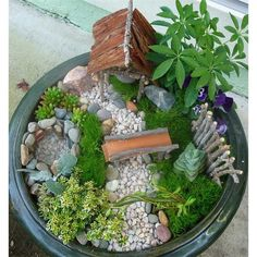 Fairy Garden Ideas - Gorgeous Gifts For Your Delight Of Your Garden ...