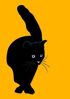 Sebastiano Ranchetti | sebastiano ranchetti > Black cat