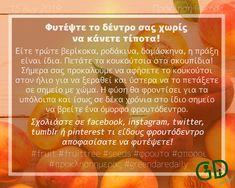 #fruit #fruittree #seeds #φρουτα #σποροι #προκλησηημερας #greendaredaily #blog #planting #δενδροφυτευση Daily Task, Fruit, Blog