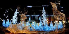 Come da tradizione, in occasione del Natale, nel periodo che va da novembre a gennaio, le piazze e i giardini della città di #Salerno si illuminano con Luci d'Artista, la più spettacolare e suggestiva esposizione di opere d'arte luminose.