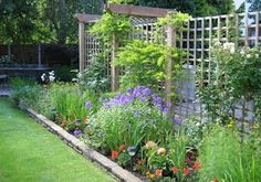 I love this trellis.  It's the kind of barrier I want between the carport, dog yard and the back patio