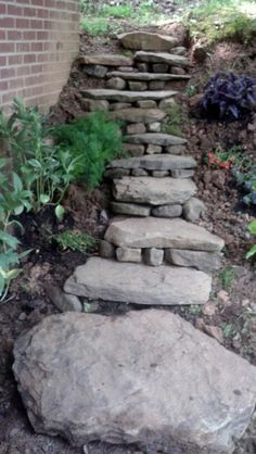 Nice use of limestone steps.   I'm thinking the path to the rabbitry and future fiber shack.