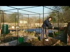 G...grape, geranium, garlic, grasses, ginger...gig. The A To Z Of Gardening Episode 7 - YouTube