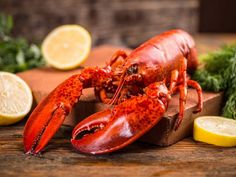 Maine lobster delivery right to your door? Order lobsters online with us and receive Maine lobsters shipped anywhere in the US. Lobster Risotto, Lobster Bisque, Lobster Boil, Frozen Lobster, Fresh Lobster, Barbacoa, Boiled Lobster Recipes, Parfait, Fast Recipes