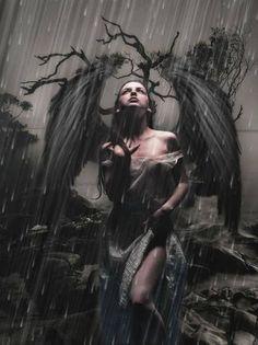 Group of Dark Angels And Goth Dark Angels, Angels And Demons, Fallen Angels, Dark Fantasy Art, Dark Gothic Art, Dark Beauty, Art Noir, Gothic Angel, Gothic Vampire