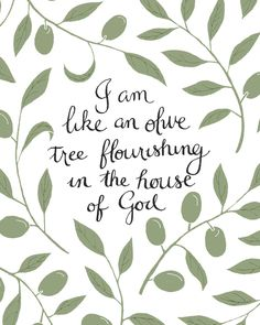 God, everyday, make me like an olive tree. Always changing to your desires and for your Kingdom.